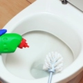 How to Clean Stains with Toilet Bowl