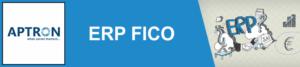 SAP FICO Course in Delhi