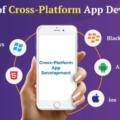 Advantages of Cross-Platform App Development